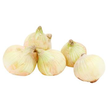 First Grade Young Onions
