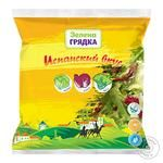 Zelena Gryadka Spanish Taste Salad Mix 200g