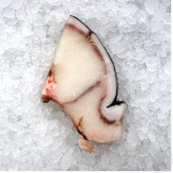 Акула блакитна стейк NIGEL 1 кг