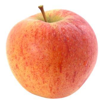 First Grade Apple Champion