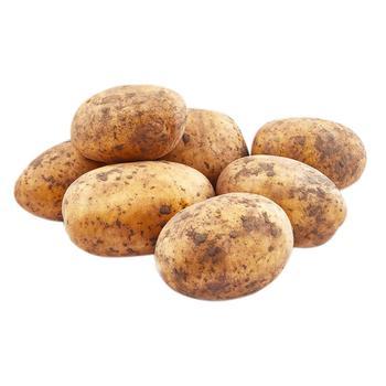 Картопля імпорт