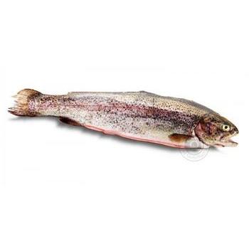 Рыба белый амур свежая