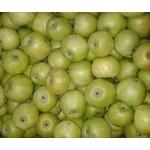 Яблуко Семеренко 2 сорт