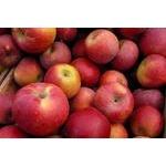 Fruit apple red fresh