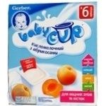 Puree Gerber apricot for children 100g Germany