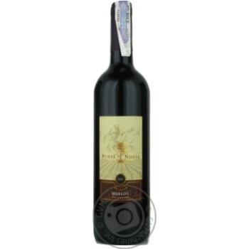 Вино мерло Пунта ногал красное сухие 14% 2010год 750мл стеклянная бутылка Рапель велли Чили
