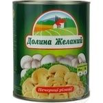 Mushrooms cup mushrooms Dolina jelaniy cut 850g can England
