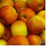 Fruit apple Perekrestok fresh Ukraine