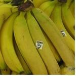 Фрукт банан Перекресток свіжа