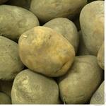 Овощи картофель Перекресток свежая Украина