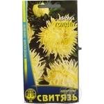 Seed Svytjaz 0.3g Ukraine