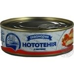 Fish notothenia Akvamaryn with vegetables canned 230g