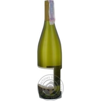 Leon de Tarapaca Chardonnay White Dry Wine 13% 0.75l - buy, prices for CityMarket - photo 4