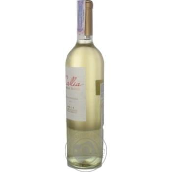 Вино Salentein Dulce біле напівсолодке 10,5% 0,75л - купити, ціни на МегаМаркет - фото 5