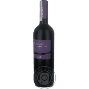 Cantele Negroamaro Red Dry Wine 13% 0.75l - buy, prices for CityMarket - photo 3