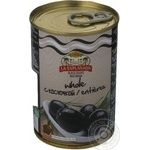 olive black with pit 300ml can
