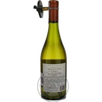 Вино Castillo De Molina Chardonnay Reserva белое сухое 14,5% 0,75л - купить, цены на Novus - фото 2