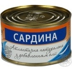 Fish sardines Easy and good with addition of butter 240g can