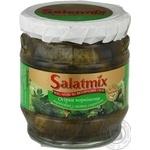Vegetables cucumber Salatmix pickled 360g