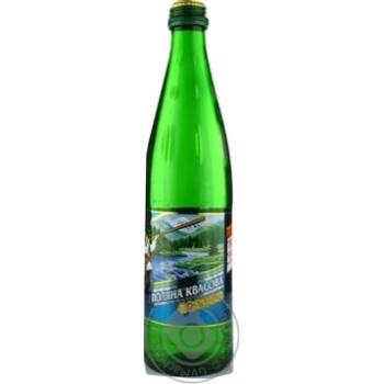 Вода Поляна Квасова лечебно-столовая 0,5л