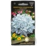 Семена Golden Garden Цинерария приморская 0,1г