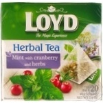 Tea Loyd Private import herbal cranberry 20pcs 40g