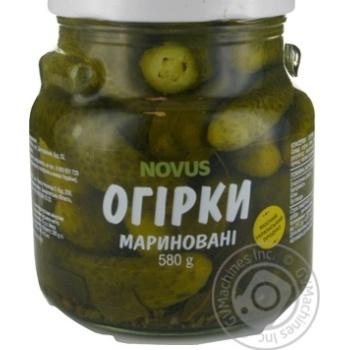 Vegetables cucumber Novus pickled 580g glass jar