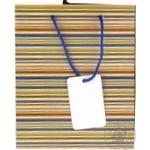 Пакет смужки кольорові папер.23*18*9см арт. 223844