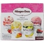 Ice-cream Haagen-dazs Fruits