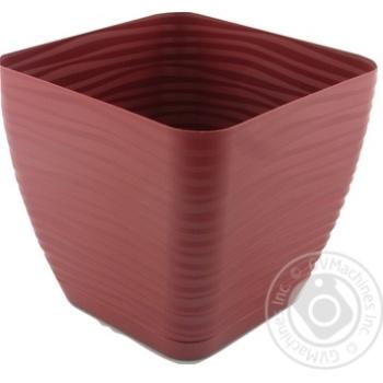 Form-Plastic Sahara Mini Marsala Square Flowerpot 17cm 3l