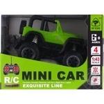 Toy car on the radio control 27cm