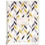 Expert notebook А4 checkered 80 pages