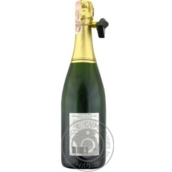 Вино ігристе Doudet Naudin Cremant de Bourgogne біле сухе 12% 0.75л - купити, ціни на CітіМаркет - фото 2