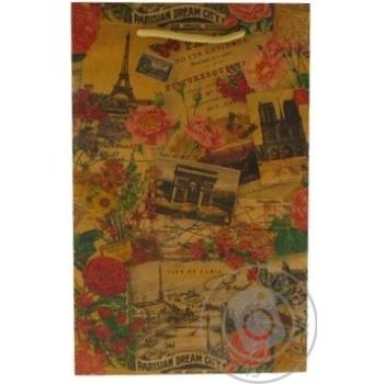 Пакет подарунковий C АртПрезент - купити, ціни на Novus - фото 1
