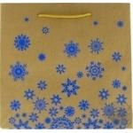 Пакет ламинированный из крафт бумаги 22x22см в ассортименте