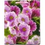 Пакет Happycom паперовий для подарунку  Квіти 32*26*11см